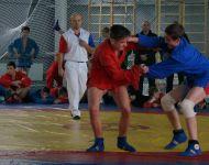 Подробнее: Чемпионат и Первенство смоленской области 2015 год